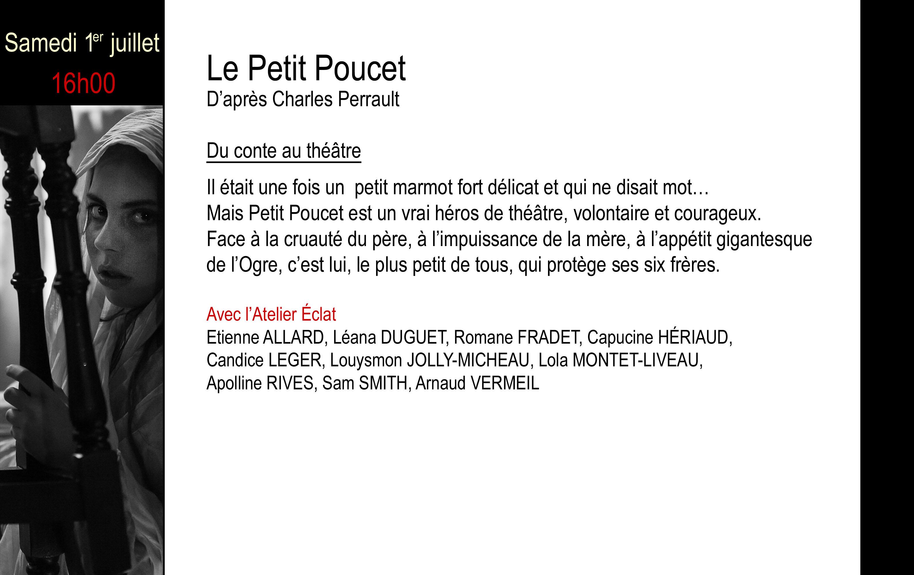 PETIT POUCET copie
